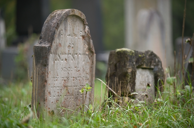 Zentralfriedhof_Jüdischer Friedhof_10