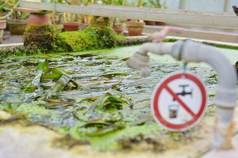 botanische-sammlung-kein-trinkwasser